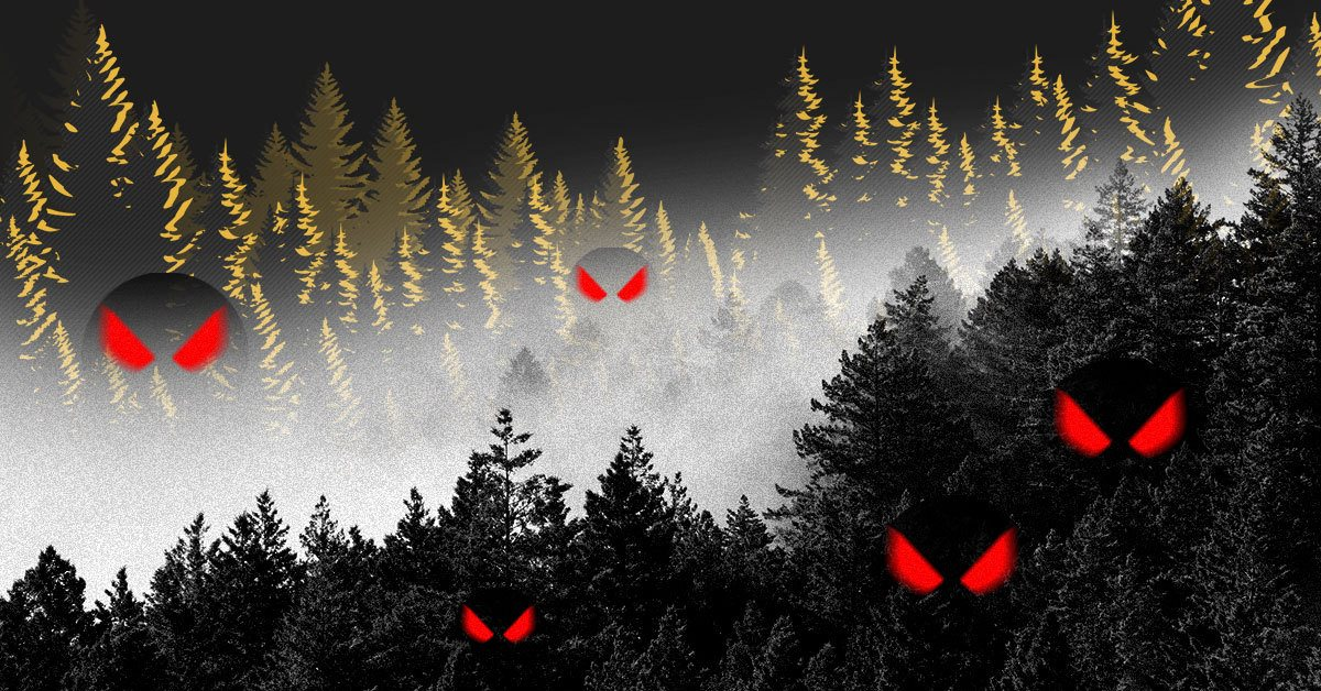 Теория «темного леса» интернета или почему мы уходим в онлайн-андеграунд