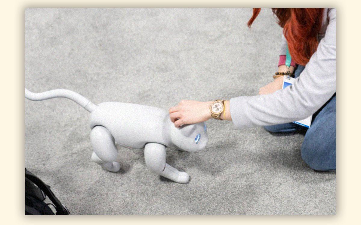 Робот дня. MarsCat — робокот с изменчивым характером, которого можно воспитать