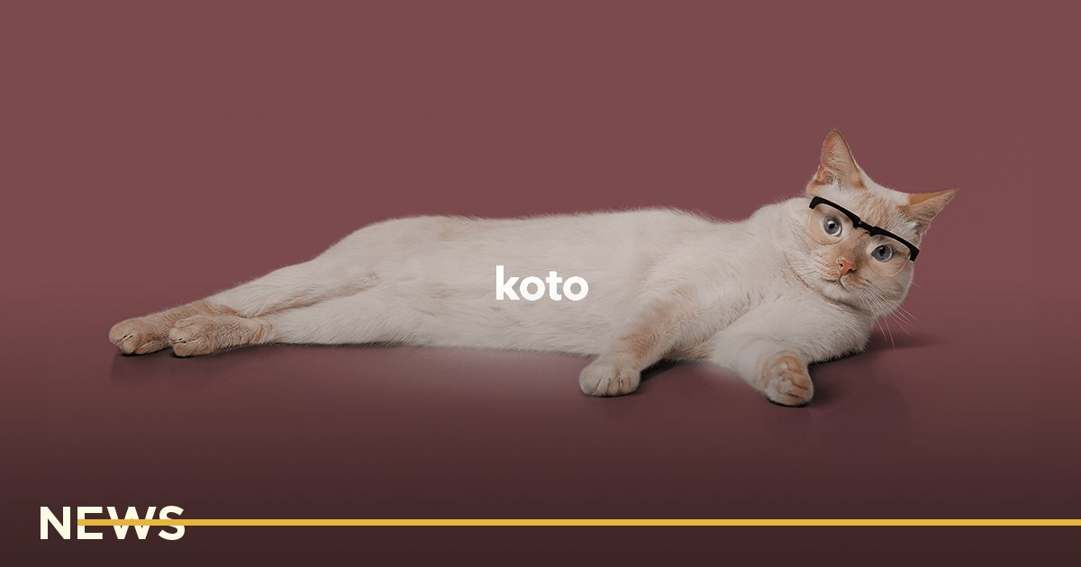 Финтех-стартап Koto от основателей monobank привлек 1,4 млн евро