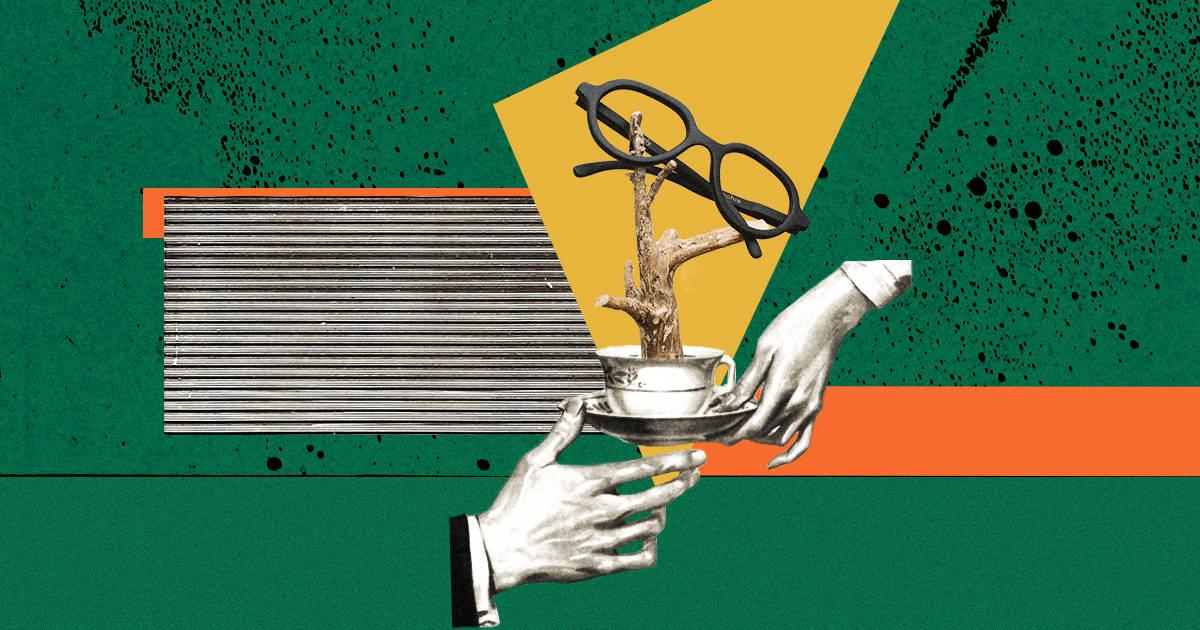 $500 000 инвестиций и цех в Жулянах. Как стартап Ochis выпускает очки из кофейного жмыха
