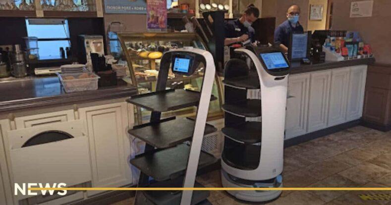 Ресторан в Каліфорнії найняв робота-офіціанта через брак працівників