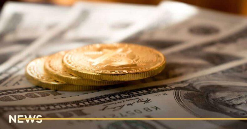 Журналіст створив жартівливу криптовалюту Idiot Coin, яку купили сотні охочих