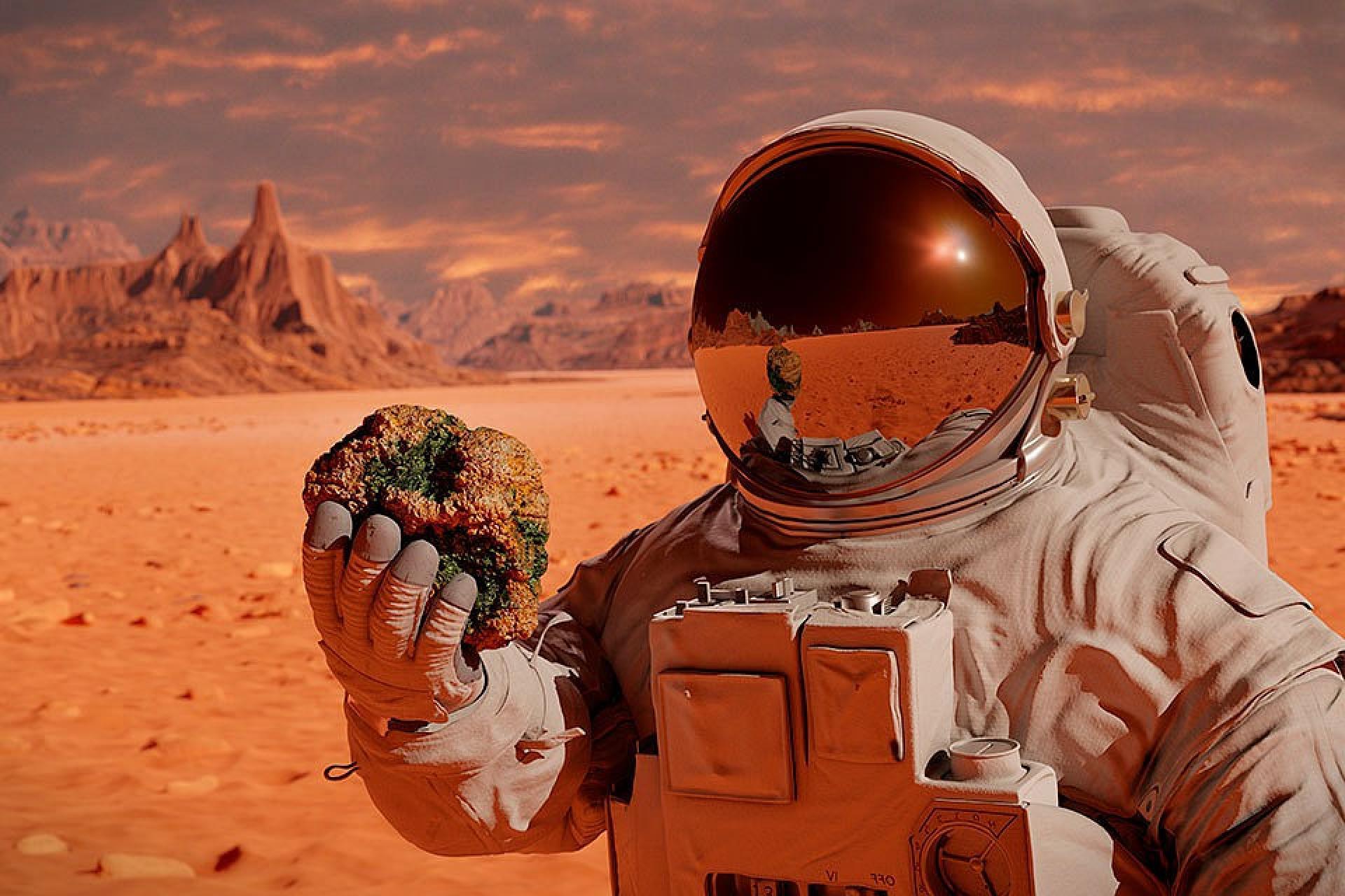 Колонизаторы Марса смогут строить жилье из собственных слез, крови, пота и мочи