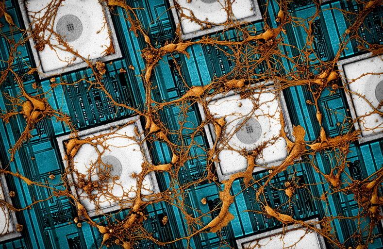 Samsung скопіювала нейронні звязки у чіп