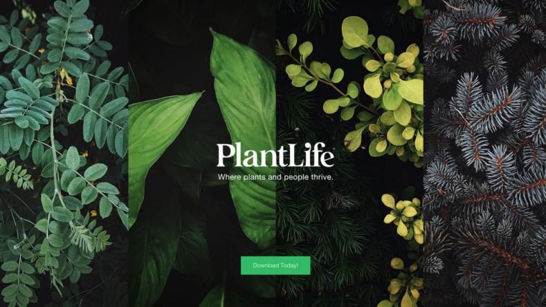 соцмережа для домашніх рослин plantlife